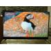 Телевизор BBK 50LEX8161UTS2C 4K Ultra HD на Android, 2 пульта, HDR, премиальная аудио система в Молочном фото 5